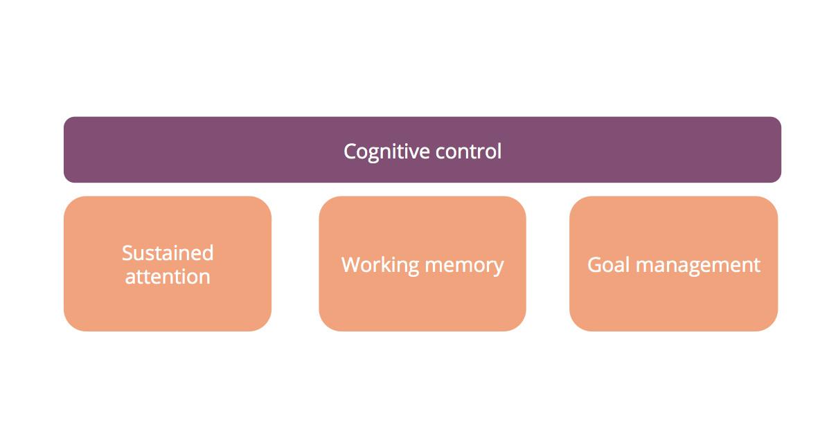 cognitive control